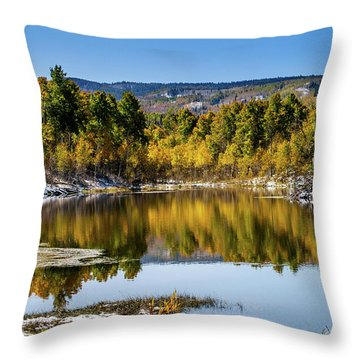 Throw Pillow featuring the photograph Autumn Cove At Ivie Pond by TL Mair