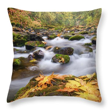 Throw Pillow featuring the photograph Autumn Creek by Nicole Young