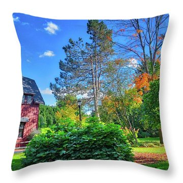 Throw Pillow featuring the photograph Autumn Days On Campus At Cornell University - Ithaca, New York by Lynn Bauer
