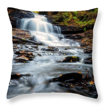 Throw Pillow featuring the photograph Autumn Days by Russell Pugh