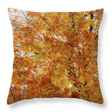 Autumn Explosion 1 Throw Pillow