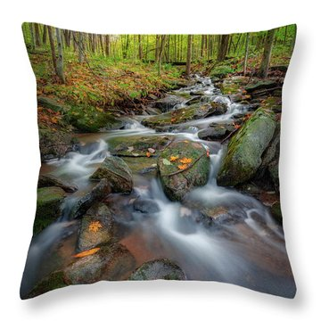 Throw Pillow featuring the photograph Autumn Falling 2 by Bill Wakeley