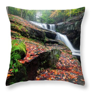 Throw Pillow featuring the photograph Autumn Falling 3 by Bill Wakeley