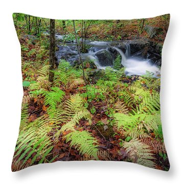 Throw Pillow featuring the photograph Autumn Fern by Bill Wakeley