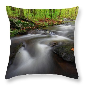 Throw Pillow featuring the photograph Autumn Flow by Bill Wakeley