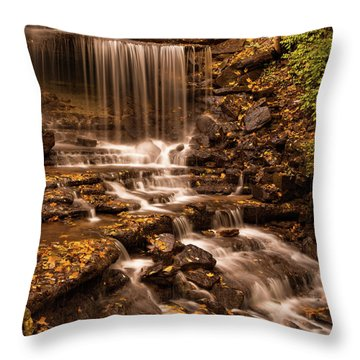 Throw Pillow featuring the photograph Autumn Foliage At West Milton by Dan Sproul