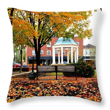 Throw Pillow featuring the photograph Autumn Gatherings  by Candice Trimble