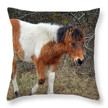 Autumn Glory N2bhs-ap On Assateague Island Throw Pillow