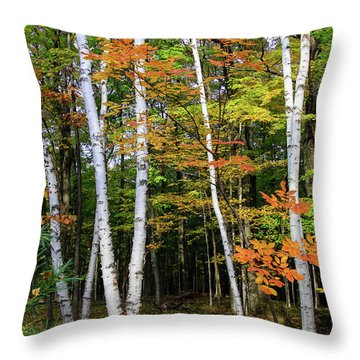 Autumn Grove, Wisconsin Throw Pillow