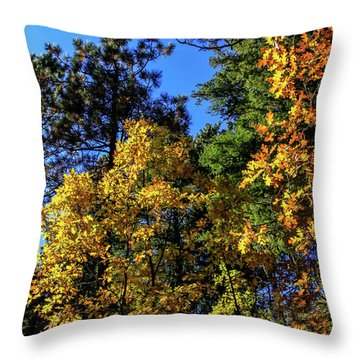 Autumn In Apache Sitgreaves National Forest, Arizona Throw Pillow