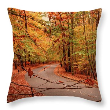 Autumn In Holmdel Park Throw Pillow