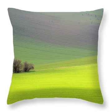 Autumn In South Moravia 13 Throw Pillow