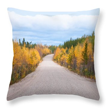 Throw Pillow featuring the photograph Autumn In Ontario by Carl Young