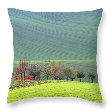Autumn In South Moravia 18 Throw Pillow