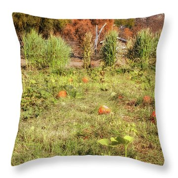 Autumn In The Pumpkin Patch Throw Pillow