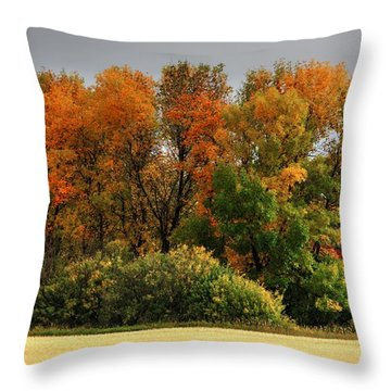 Autumn Is Nigh  Throw Pillow
