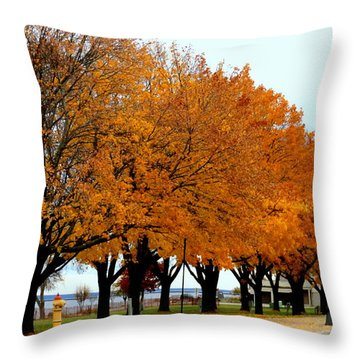 Autumn Leaves In Menominee Michigan Throw Pillow