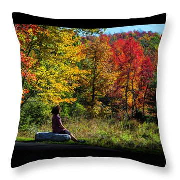 Autumn Leaves In The Catskill Mountains Throw Pillow