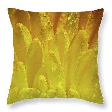 Autumn Macro-1 Throw Pillow