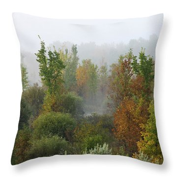 Throw Pillow featuring the photograph Autumn Morning Fog by Tatiana Travelways
