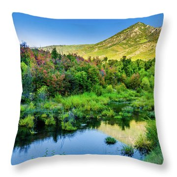 Throw Pillow featuring the photograph Autumn On The Little Deer Creek by TL Mair