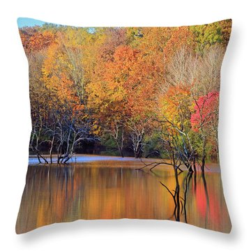 Throw Pillow featuring the photograph Autumn Reflections by Angela Murdock