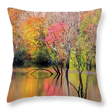 Throw Pillow featuring the photograph Autumn Reflections At Alum Creek by Angela Murdock