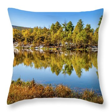 Throw Pillow featuring the photograph Autumn Reflections At Ivie Pond by TL Mair