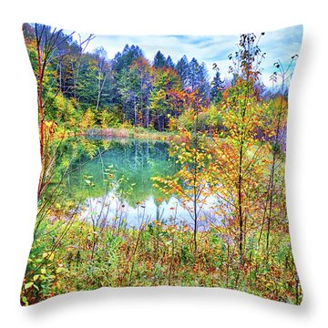 Throw Pillow featuring the photograph Autumn Reflections At The Pond by Lynn Bauer