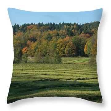 Autumn Scenery Throw Pillow