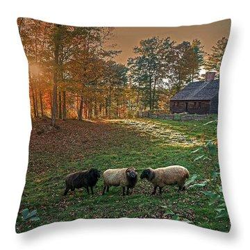 Autumn Sunset At The Old Farm Throw Pillow