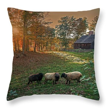 Autumn Sunset At The Old Farm Throw Pillow
