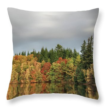Throw Pillow featuring the photograph Autumn Tree Reflections by Grant Glendinning