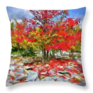 Autumn Trees And Rocks - Fall Colors Ap Throw Pillow