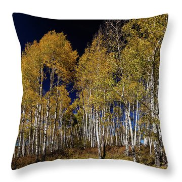 Throw Pillow featuring the photograph Autumn Walk In The Woods by James BO Insogna