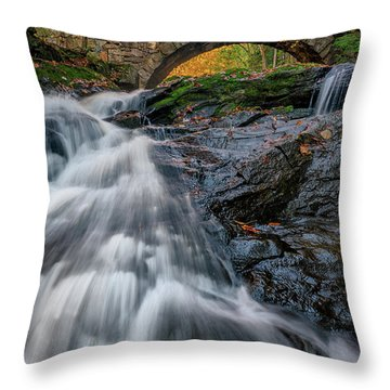 Throw Pillow featuring the photograph Autumn Waterfall In Hallowell by Rick Berk