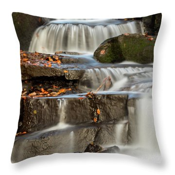 Throw Pillow featuring the photograph Autumn Waterfall by Scott Lyons