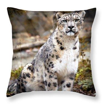 Autumnalleopard Throw Pillow