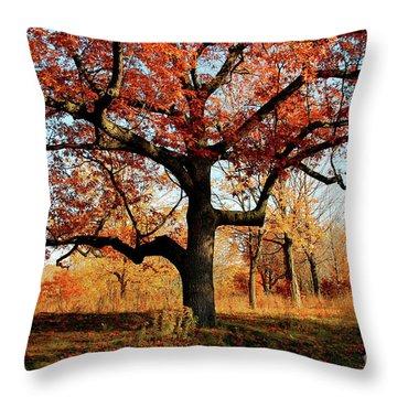 Autumns Paint Brush Throw Pillow