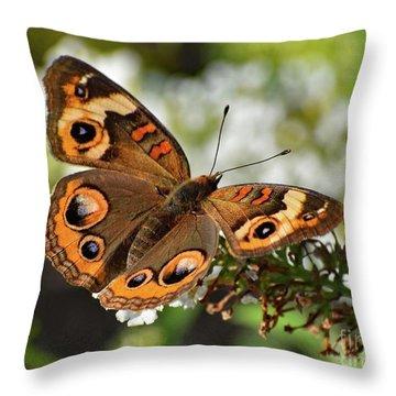 Awesome Beauty - Common Buckeye Throw Pillow