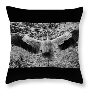 Time To Spread Your Wings Throw Pillow