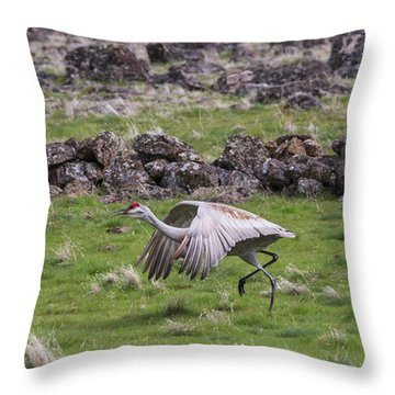 B27 Throw Pillow