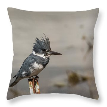 Throw Pillow featuring the photograph B31 by Joshua Able's Wildlife