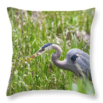 Throw Pillow featuring the photograph B40 by Joshua Able's Wildlife
