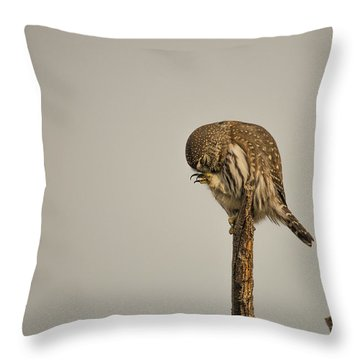 B41 Throw Pillow