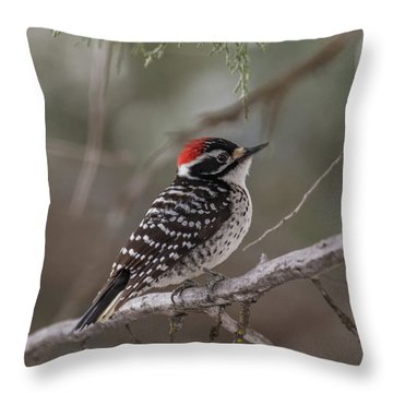 B42 Throw Pillow