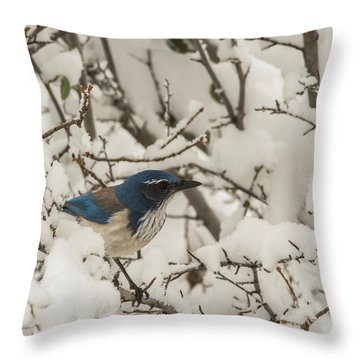 B44 Throw Pillow