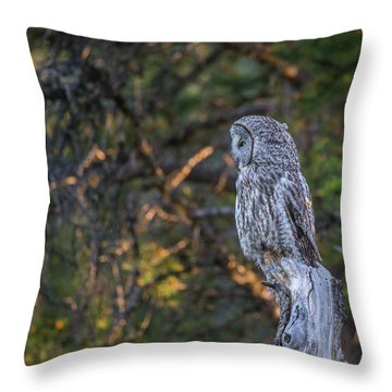Throw Pillow featuring the photograph B46 by Joshua Able's Wildlife
