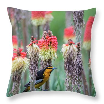 B58 Throw Pillow
