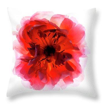 B760/1834 Throw Pillow